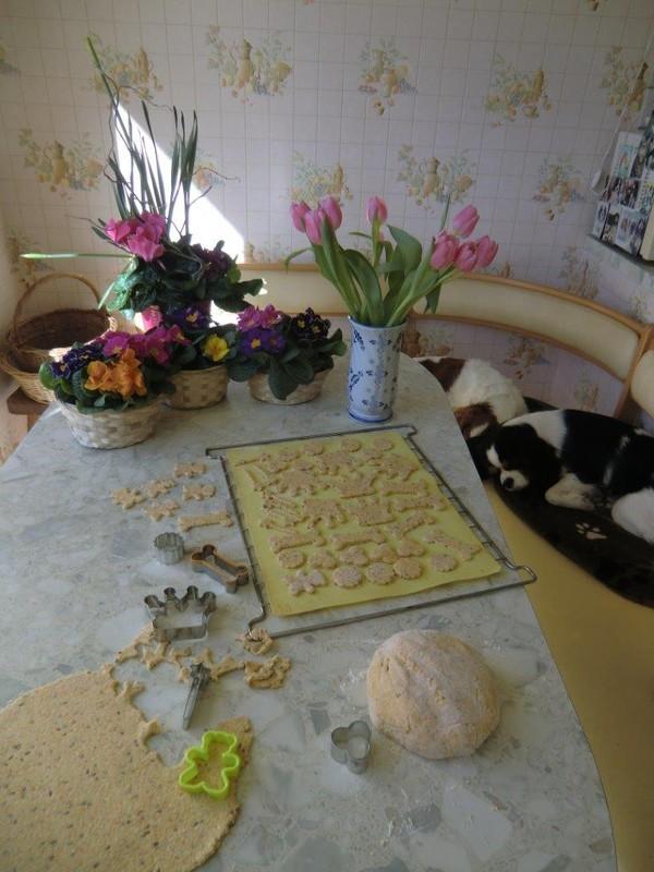 Biscuits pour les poilus